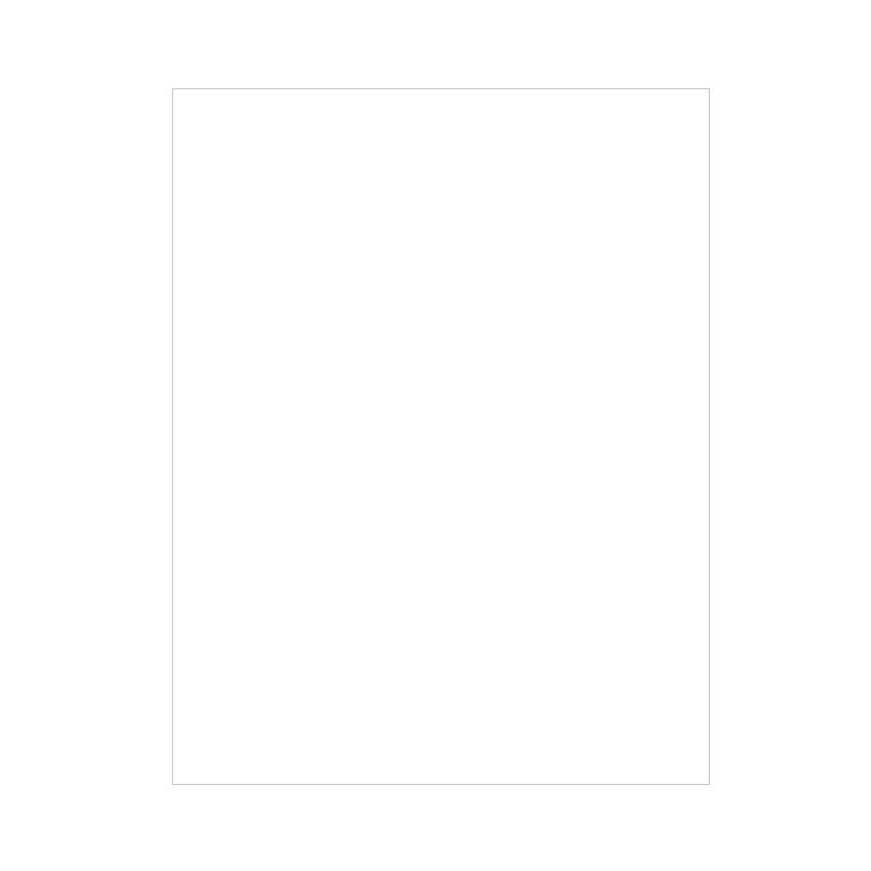 FS Writing Paper Unuled Double Sheet -